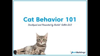 Cat Behavior 101 with Bark Buildings and Dr. Rachel Geller
