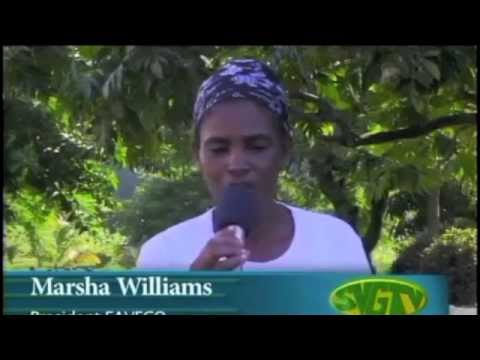 SVG TV News - Farmers going Organic