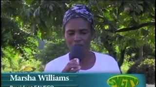 SVG TV News - Farmers going Organic