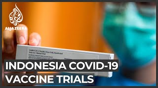 Indonesia: Testing for Chinese vaccine underway as COVID-19 cases rise