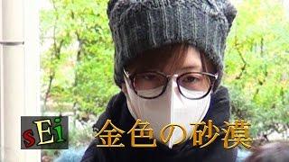 花乃まりあさんの大劇場卒業(12/3)が間近です 2016.12.1Filming FLOWE...