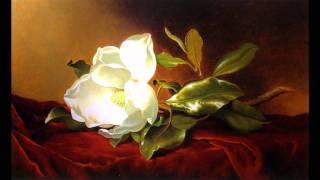 Ballroom dance music / Venice music (Georges Bizet Carmen opera habanera instrumental song)