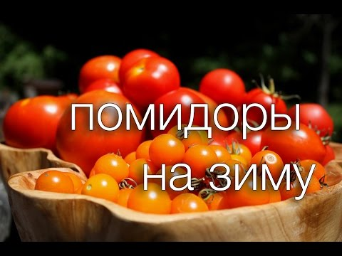 помидоры на зиму Рецепты SMARTKoK без регистрации и смс