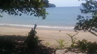 Panama   White Sand Beacfront Lot With House For Sale $180,000