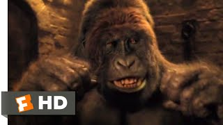 Dolittle (2020) - Gorilla vs. Tiger Scene (7/10) | Movieclips