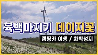 캠핑카 여행 / 무료차박성지 육백마지기 캠핑카 차박 /…