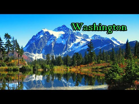 Top 10 reasons NOT to move to Washington. One of them is Bigfoot Hunters.