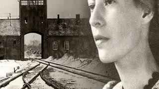 Auschwitz-birkenau war das größte, von den nazis errichtete vernichtungslager. es ist zu einem symbol geworden für holocaust und dem absolut bösen in uns...