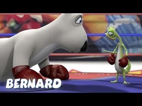 Bernard Bear | Boxing AND MORE | 30 min Compilation | Cartoons for Children