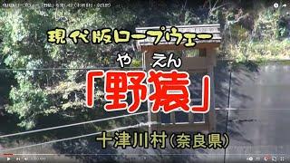 現代版ロープウェー「野猿」を楽しむ(十津川村・奈良県)