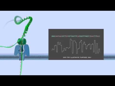 Nanopore DNA sequencing