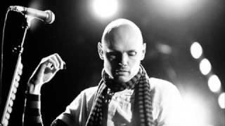 Billy Corgan Dia