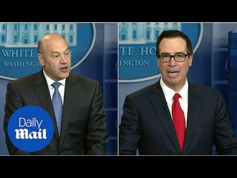Mnuchin and Cohn unveil WH 'biggest tax cut' in US history in April - Daily Mail