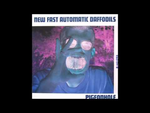New Fast Automatic Daffodils - Amplifier