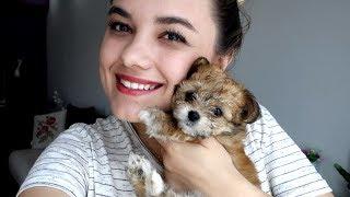 Herkese merhaba ben Başak Karahan. Bu video da Eda ile birlikte ked...
