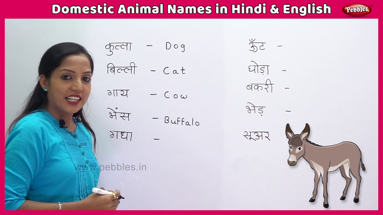 Domestic Animal Names in Hindi and English | Learn English in Hindi | Farm  Animals For Kids