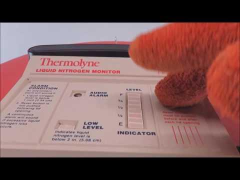 Thermo Locator Jr Liquid Nitrogen Dewar
