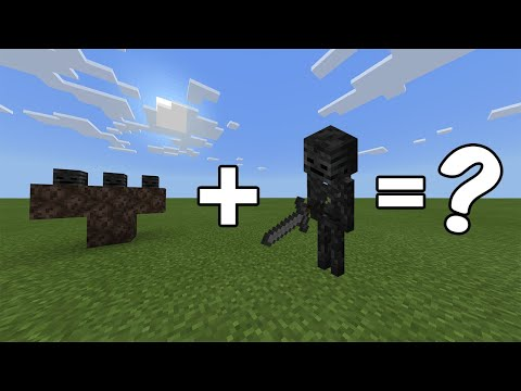 I Combined A Wither And A Wither Skeleton In Minecraft - Here's WHAT Happened...