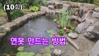 연못만드는방법, 비단잉어 키우기,아름다운정원,정원꾸미기…