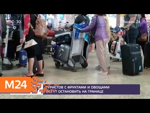 Правила провоза багажа через границу ужесточат в России - Москва 24