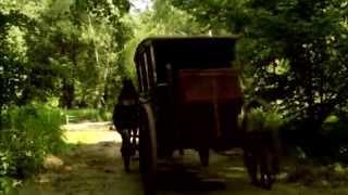 Король и Шут - Лесник (фан-клип)