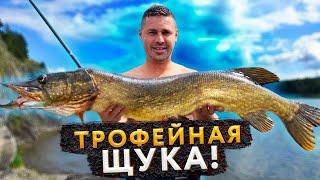 ЭТА ХИТРОСТЬ ПОМОЖЕТ ЛЮБОМУ ПОЙМАТЬ ЩУКУ ЩУКА ГИГАНТ ТРОФЕЙ PIKE FISHING