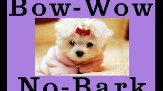 Anti Barking Dog Collar | No Bark | Stop Bark Control | Shock Training - Amazon.com