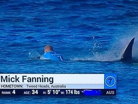 Mick Fanning Surfer Shark Attack - I Rooted For The Shark