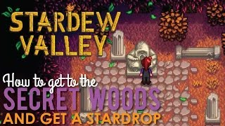 How to get a Stardrop in the Secret Woods, Stardew Valley
