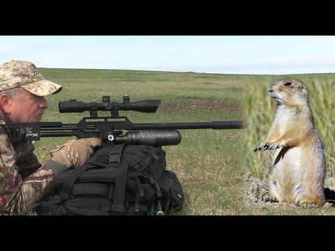 Airgun Hunting: FX Impact Airgun Prairie Dog Hunt