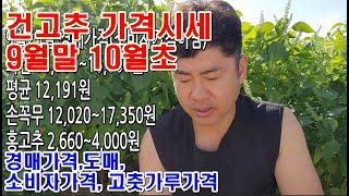 9월말10월초 건고추경매가격시세 고춧가루 도소매 김장철…