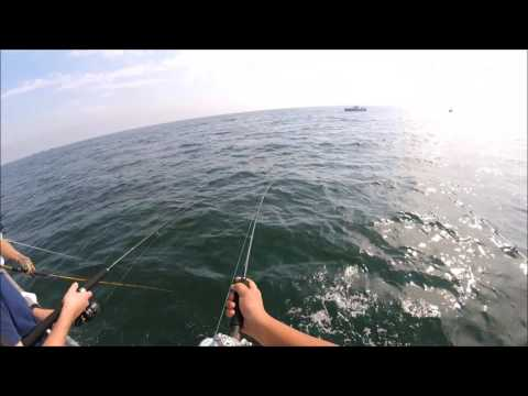 Long Island Fluke Fishing James Joseph Ii Huntington
