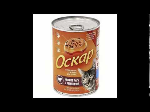 . Доберман – купить сухой корм для кошек недорого c доставкой по москве и россии. Сухой корм для взрослых кошек grandorf с ягненком и рисом.