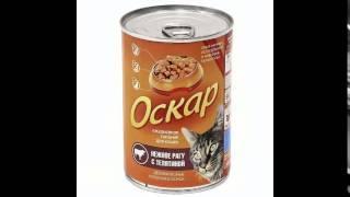 корм для кошек купить оптом