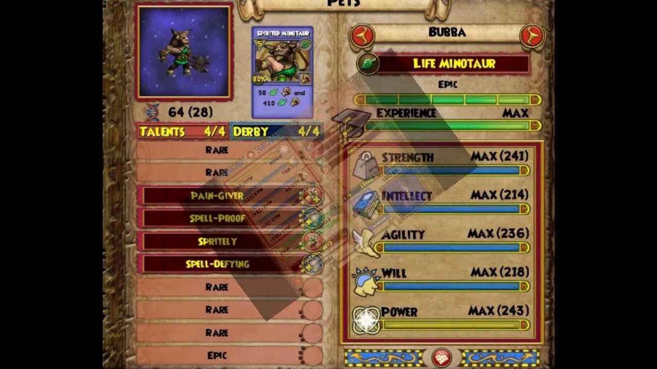 Wizard101 My Pet's