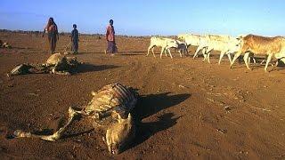 Ethiopia is Facing a Humanitarian Crisis due to El Niño