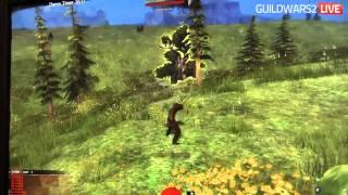 PAX East 2011 - Guild Wars 2 - Ranger Gameplay - Part 1