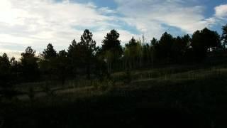 Gordon Gulch Dispersed Camping Area, CO from Daniel  B.