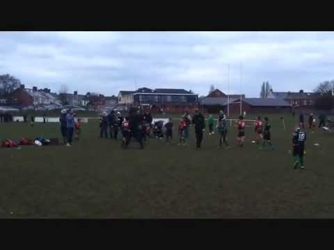 St Peters RFC U8s v CRICC & Llandaf North 24/02/13