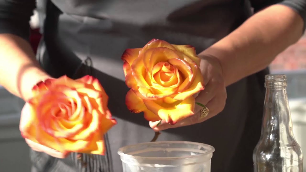 How to Preserve Flowers with Wax - YouTube