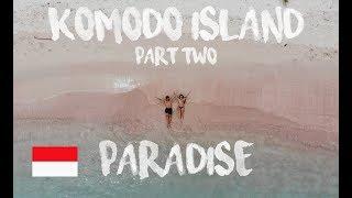 KOMODO DRAGON VS DEER  | SWIMMING WITH MANTA | PINK BEACH | PADAR ISLAND