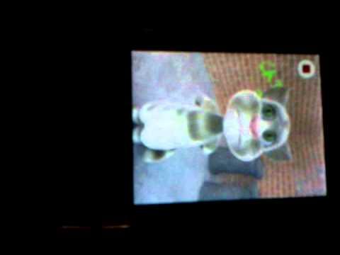 El gato tom canta Nene Malo