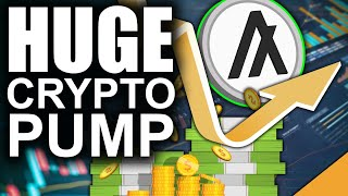 Algorand PUMPS Out Of No Where (Huge Move for Cryptocurrency OG)