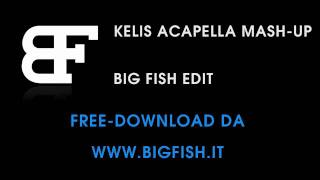 Big Fish - Kelis Acapella Mash-Up