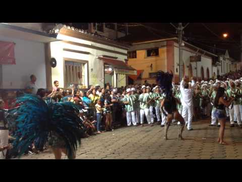 GRES Gato Preto, Prados - MG, 2015 VIII