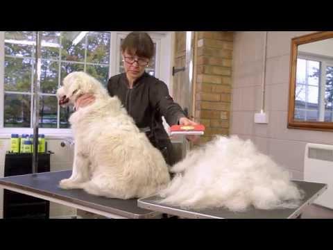 FURminator deShedding verktøy til hund