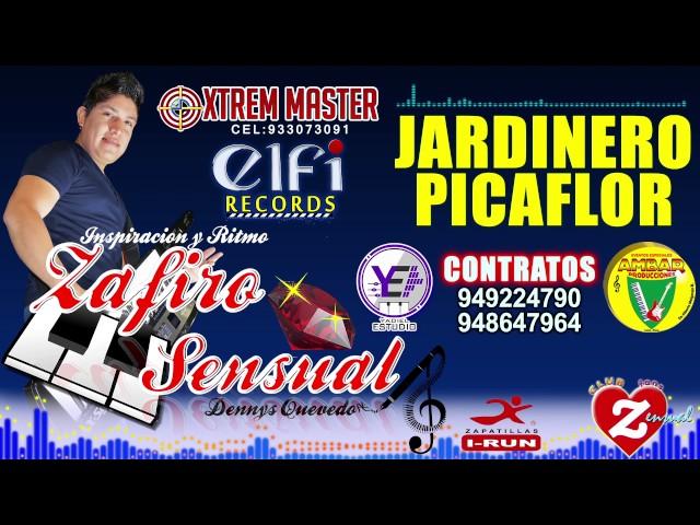 JARDINERO PICAFLOR - Zafiro Sensual