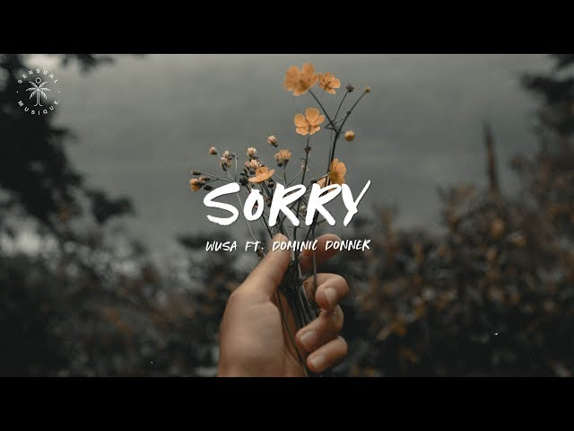 WUSA - Sorry (feat. Dominic Donner) [Lyrics]