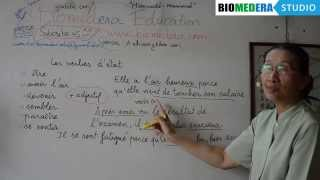 Bài 75: Một số động từ trạng thái (V + tính từ) trong tiếng Pháp - Les verbes d'état