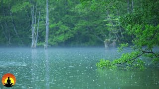 Nature Sounds, Stress Relief, Heavy Rain, Meditation, White Noise, Sleep Music, Relax, ☯3403